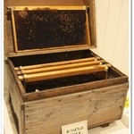 杉養蜂園 -