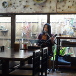 Shureisoba - 12時から2時まで三線と島唄のライブがあります