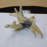 天ぷら 京星 - 宍道湖の白魚