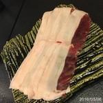柚木元 - 猪