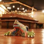 居酒屋ドリトル - 桧板張りの床