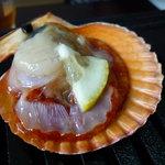 新島水産 - ☆ヒオウギ貝珍しいですね☆