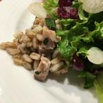 Piccolo ristorante CIBO SANO - 押し麦のサラダ