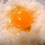 たまごハウス - たまごハウス ゆう地卵 in卵かけご飯♪黄身の輝きが素晴らしいですね^^♪ fromグリーンロール