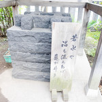 48505345 - 福も汲み上げる亀戸井戸@近くの香取神社