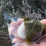 和菓子処 甘味屋 - 桜もちは手乗りサイズ