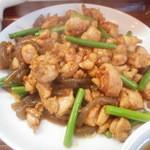 48576126 - いつかの鶏の炒め物
