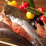 肉専門 大衆酒場 トロット - 新鮮な旬の鮮魚を日々仕入れてます