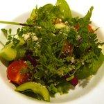 486971 - (2008/5)ぐるなびクーポンの「無農薬野菜のサラダ」