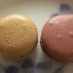 アルデュール - 料理写真:マロングラッセ(左)、ショコラアメール(右)
