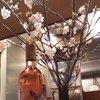 食楽 太太太 - 内観写真:店内で花見できます~~!!
