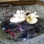 茶房山のうさぎ - 常連さんが採りたて椎茸を焼き焼き