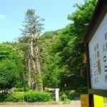 488233 - 岐阜公園