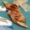 旬彩鮨遊膳 よしかわ - 料理写真:握りアナゴ