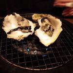 九州酒場 - 「岩牡蠣」少々(´・ω・`)2016年薄桜記