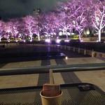 パレタス - 暖かい夜はテラス席が素敵♪