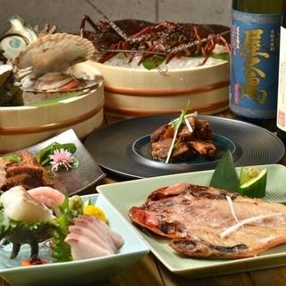 龍海丸おまかせコース料理
