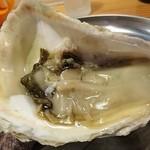 Kakitoshampankakibero - 島根県隠岐の島産岩牡蠣 海輝王