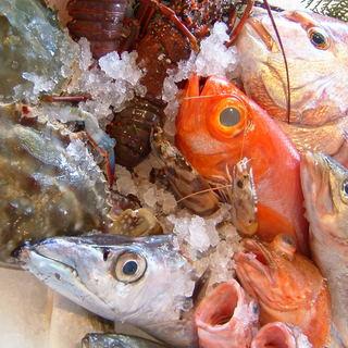市場直送の瀬戸内の地魚をどうぞ!