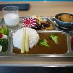 呉 ハイカラ食堂 - 料理写真:鉄板カレー~☆
