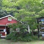 4902743 - 湖の畔で森に包まれる店。