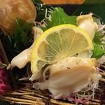 49021704 - バイ貝の刺身です。