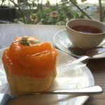 49037193 - デコポンのケーキと有機奈良紅茶