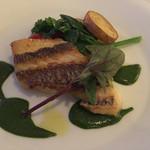 イタリア料理 リストランテ フィッシュボーン - 鯛のポワレ  バジルソース