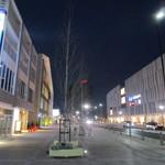 横浜らーめん 源泉 - 右はららぽーと左ビルが店