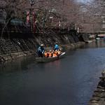 49085689 - 長閑な川遊び