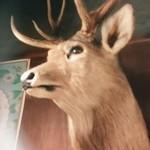 49152082 - 店内の鹿の剥製。迫力あります!