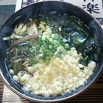 49155708 - 山菜そば