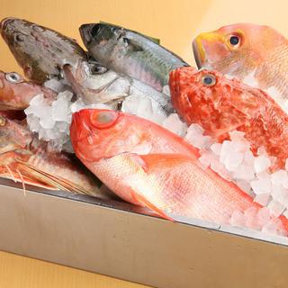 地元漁港直送!朝獲れ一本魚