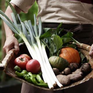 【旬を楽しむ】季節お野菜を是非堪能して下さい。