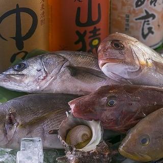 長浜市場から500m、毎日長浜市場直送の海鮮、刺身、生き造り