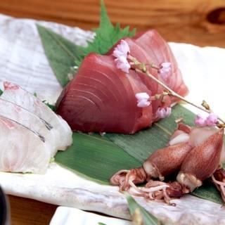 [鮮魚]新鮮なお刺身を日替りで
