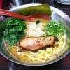 Nidaimeramendokoromaruhashun - 料理写真:鶏白湯らーめん730円