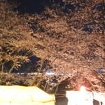 河崎屋 - 2016.03 宮川の夜桜