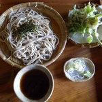 4934952 - 山芋つなぎざるそば・山菜天ぷら付き(800円)_2010-08-28