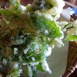 4934964 - 山菜天ぷら_2010-08-28