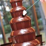 ルミエール - 料理写真:人気のチョコレートファウンテン