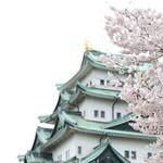 49387236 - 桜と名古屋城