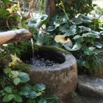 皆吉 - 古民家の庭先はきれいに整えられています。 09年2月
