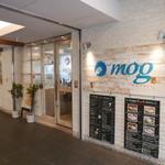 mog - 入口