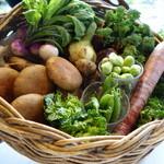 49446481 - 藤沢の地野菜