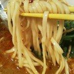 加哩激場麺 - '10・05・24 麺のアップ