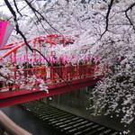 パティスリー ラ・グリシーヌ - 目黒川の桜と雰囲気のある橋