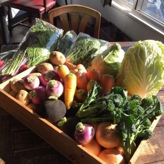 有機野菜は露地栽培のひとつぶ農園から