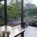 さらの木 - (2016/2月)朝食のダイニングテーブルから庭を見たところ