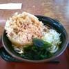 山田うどん - 料理写真:天ぷらうどん(大盛り)